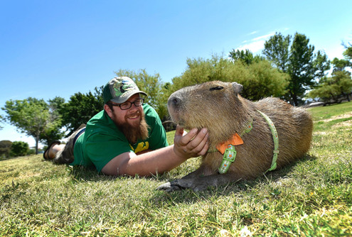Cody Kennedy and Pet Capybara
