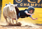 County Fair Mutton Busting