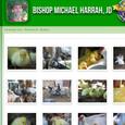 Michael Ducks 2.JPG