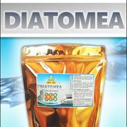 DIATO(3).jpg