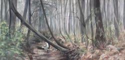 heron-creek-oglethorpe