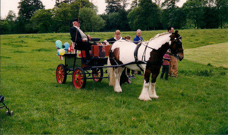Pony cart, millenium celebrations in 2000