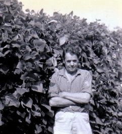 Fred Dann standing proudly in front of his runner beans
