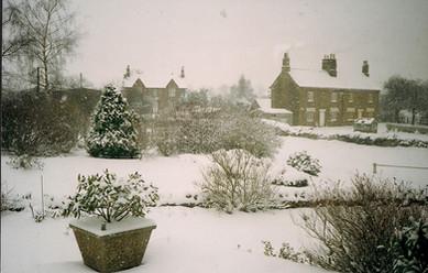Manor Farm & Norman Cottages c. 1991