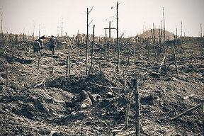 Polygon Wood battlefield.jpg