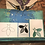Thumbnail: BEE Template