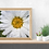Thumbnail: White Daisy ~ Painting Party Pack