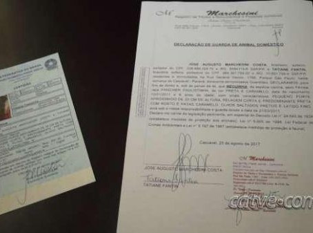 Primeira certidão animal é emitida em cartório de Cascavel no PR