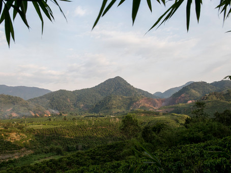 La vinculación entre la conservación y el desarrollo en Viet Nam