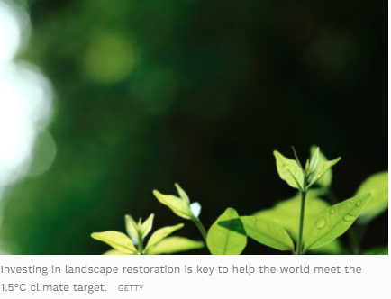 How Monitoring Can Spur Investment In Land Restoration