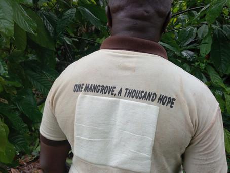 Recuperación de los manglares de Nigeria