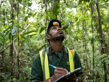 Safeguarding Papua New Guinea's Biodiversity