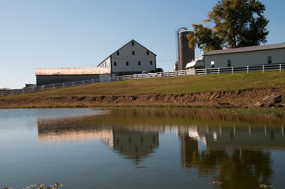 Image of dairy farm