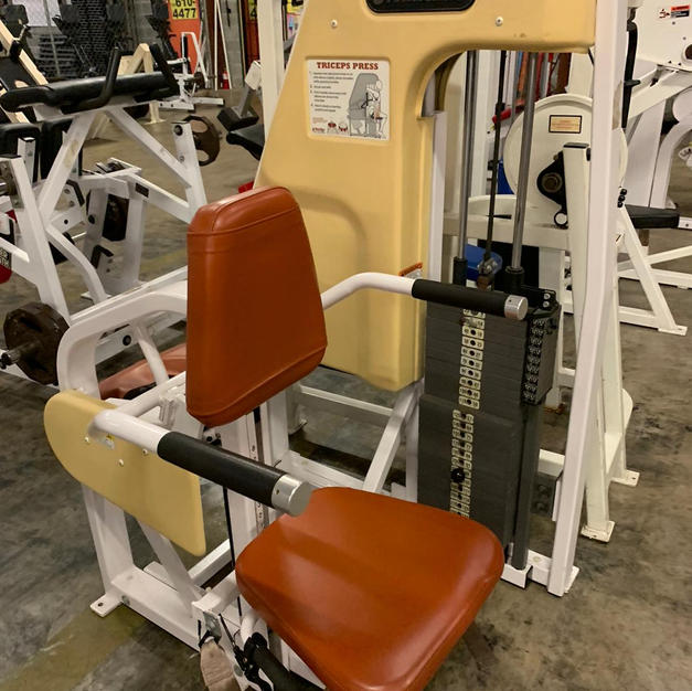 TRICEP: Pin Loaded Seated Press Down