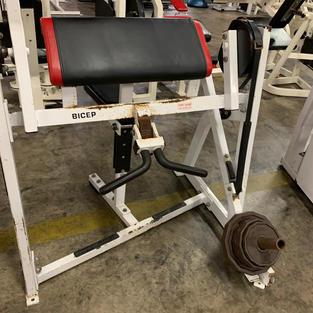 BICEPS Hammer Strength Plate Loaded Prea