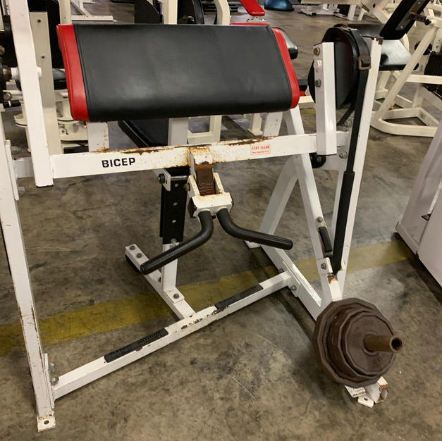 BICEPS Hammer Strength Plate Loaded Prea