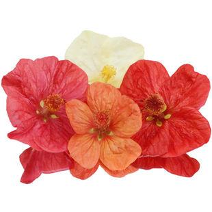 Paradise-flower.jpg