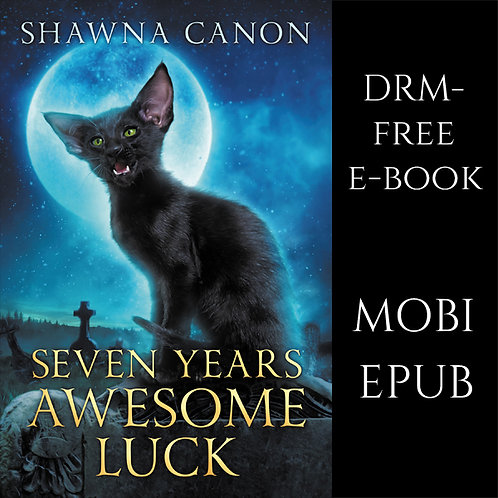 Seven Years Awesome Luck e-book