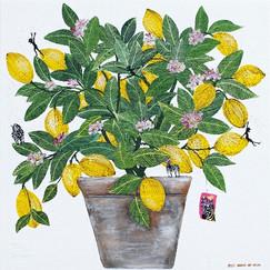 완벽한 레몬나무 60.6X60.6cm 캔버스에혼합재료2021