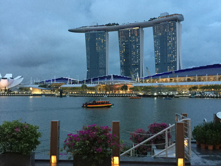 How I became a Trailing Spouse in Singapore