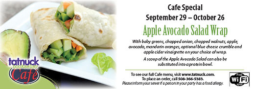 Avacado_Apple_Salad_Wrap_September_29_â€
