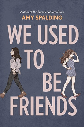 We Used To Be Friends Hardcover