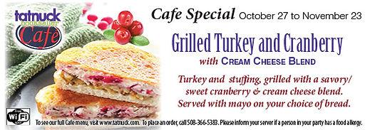 cran-turkey-stuffing-creamcheese.jpg