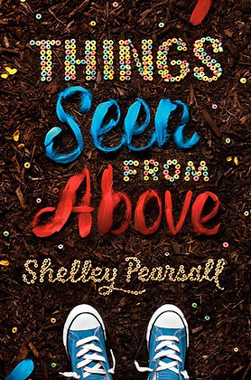 Things Seen From Above Paperback