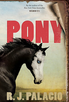 Pony Hardcover