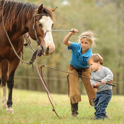 Old Century Meats horse training