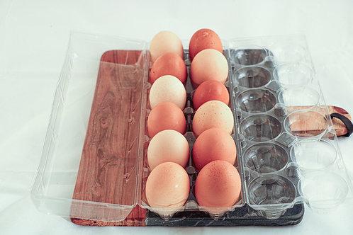 French Specialty Eggs (mixed dozen)