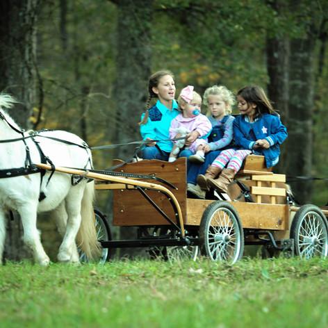Old Century Meats pony carts