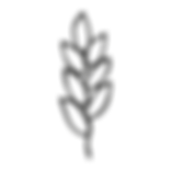 GG_icons_Gluten Free - Grey.png