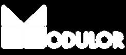 logo modulor blanco.png