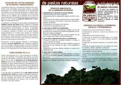 Tríptico_De_Pastos_Naturales2