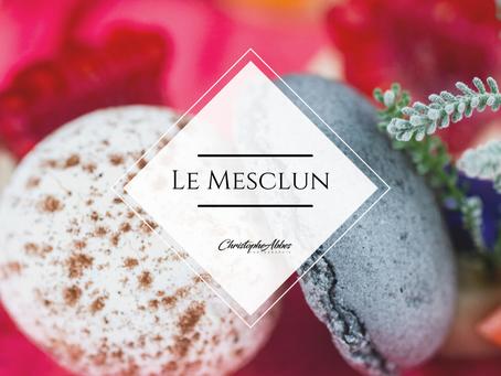 Le Mesclun- Seguret