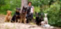 poppdogs.de - Gassiservice und mehr
