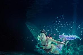 Show en aquarium
