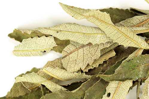 Yerba Santa 2 oz. Loose Leaf Tea or Smudging