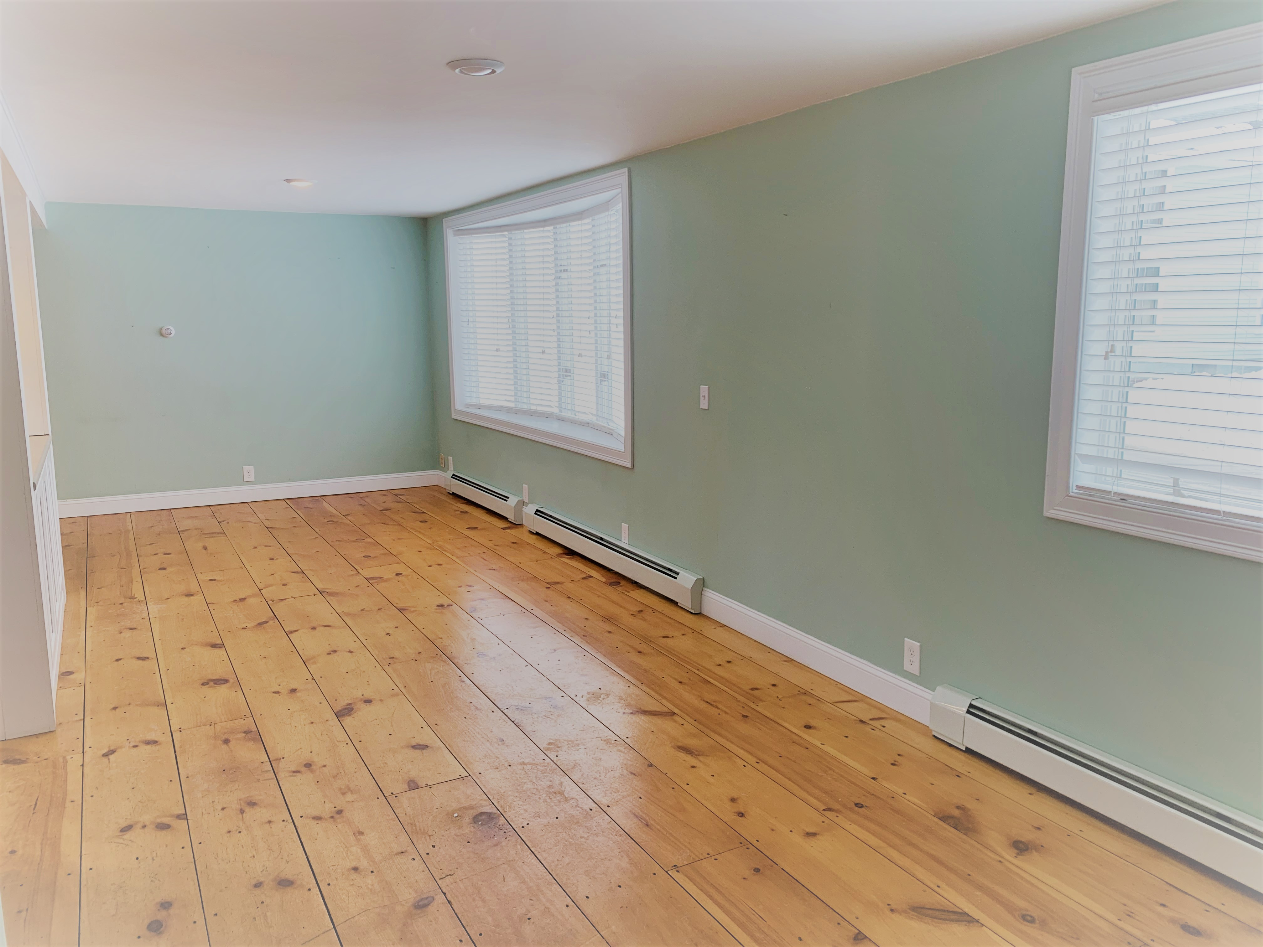 Living-Dining room pic 2
