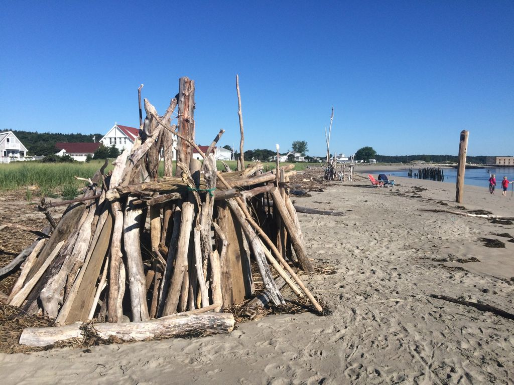 Drift wood fort