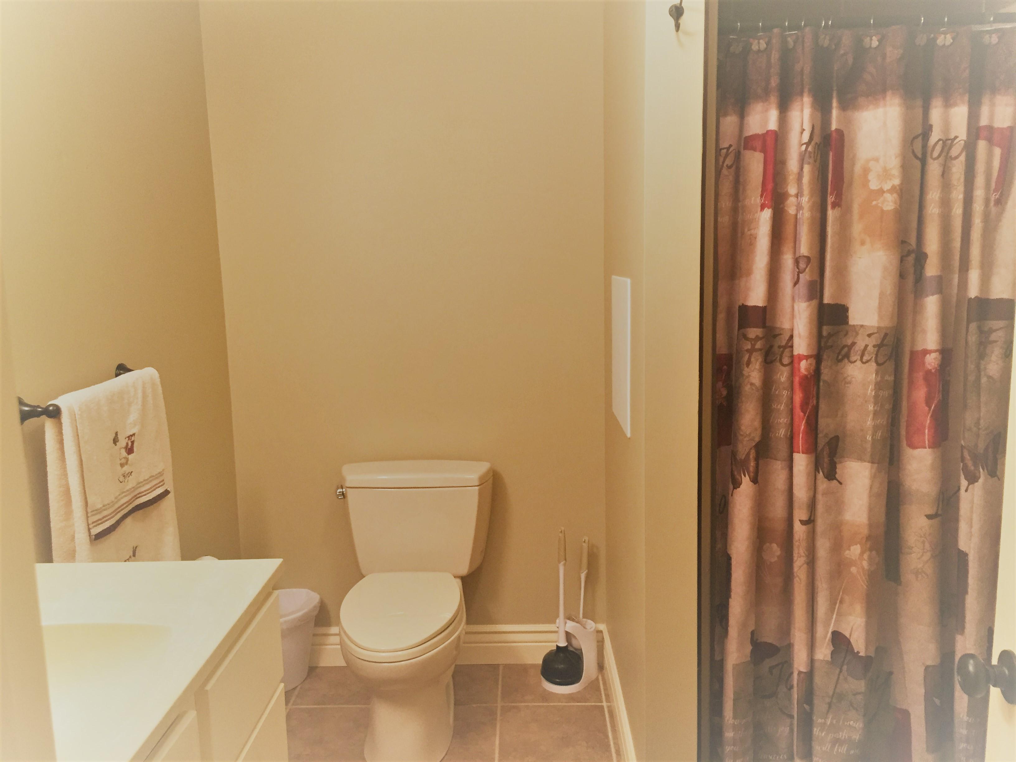 Main Floor bathroom pic 2