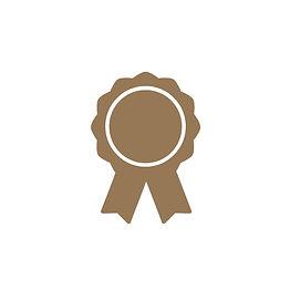 Badge Bronze.JPG