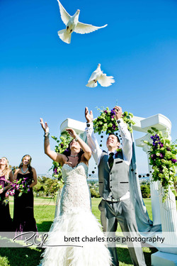 wedding dove release, kate sessions