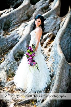 Balboa park fig tree, bridal photos