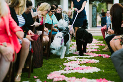 Type A Soiree-Coronado Wedding (34)