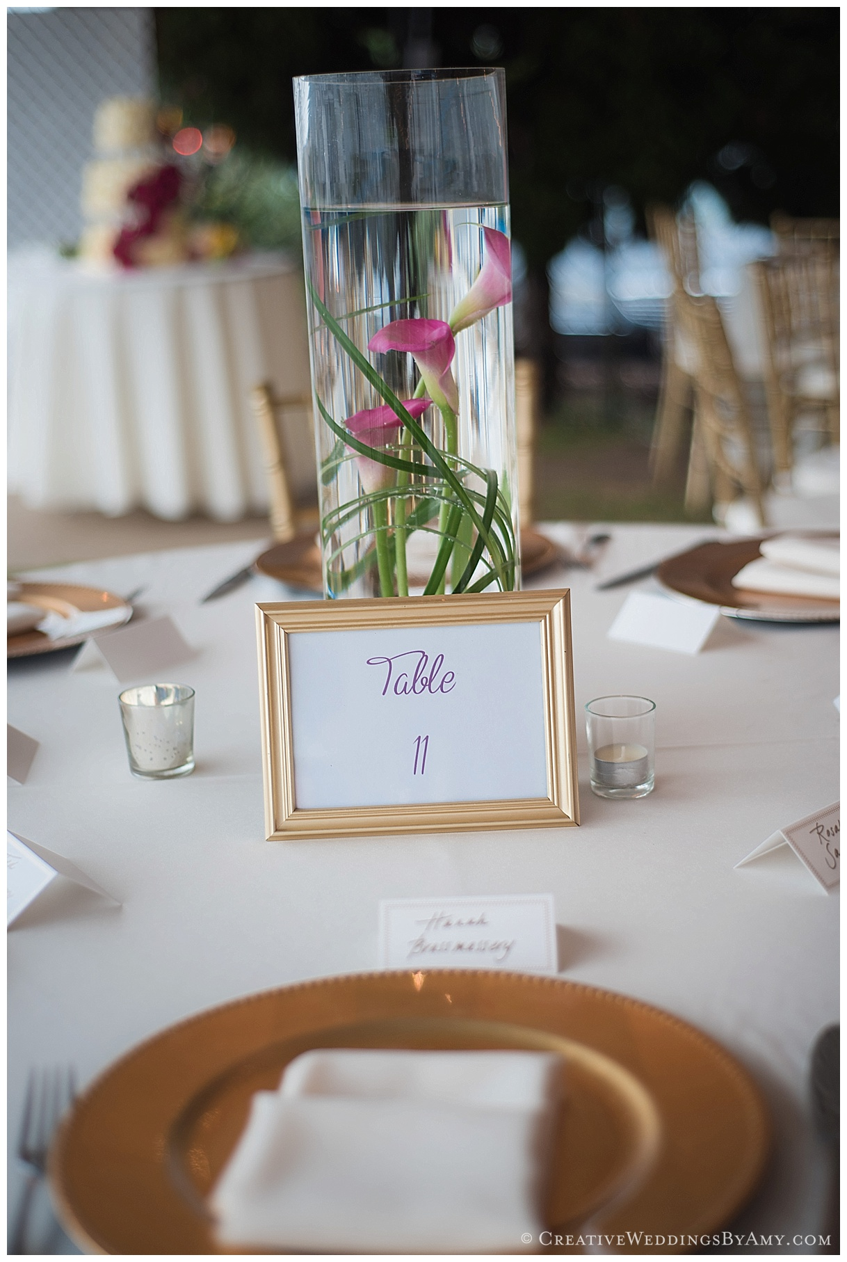 Type A Soiree Weddings- Coronado Yacht Club- Tineka and Nathan (2)