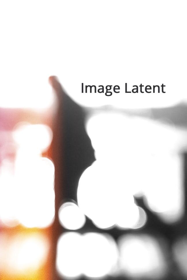 Image Latent
