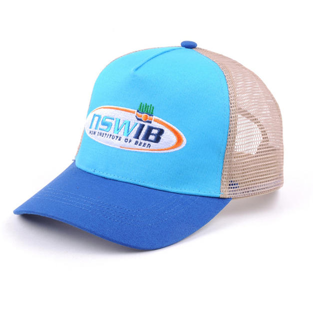 Tri-Color Mesh Back Hat