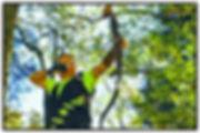 bildbow.jpg